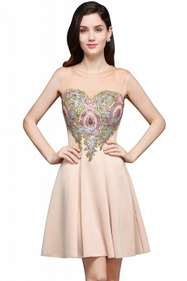 AYLIN   A-line Scoop Chiffon Short Homecoming Dress With Appliques_2