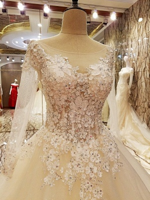 Ball Gown Long Sleeves Appliques Tulle Lace-up Wedding Dresses_5