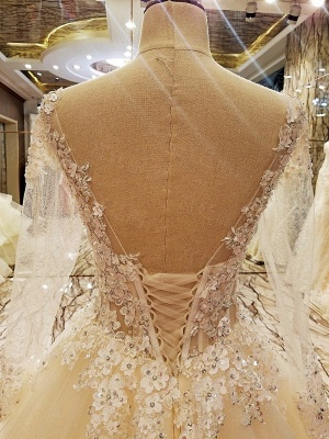 Ball Gown Long Sleeves Appliques Tulle Lace-up Wedding Dresses_8