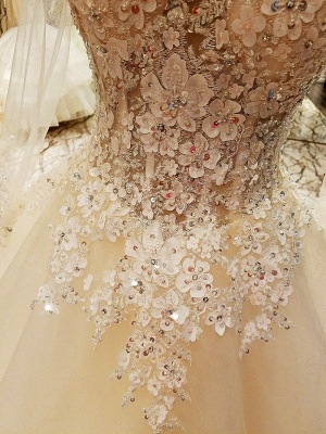 Ball Gown Long Sleeves Appliques Tulle Lace-up Wedding Dresses_7