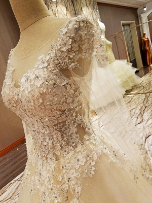Ball Gown Long Sleeves Appliques Tulle Lace-up Wedding Dresses_10