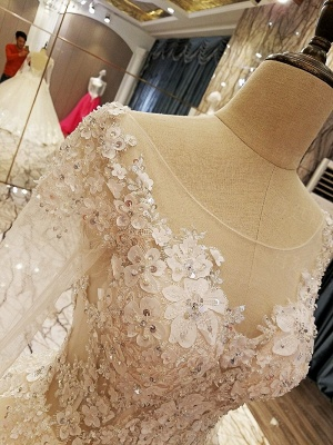 Ball Gown Long Sleeves Appliques Tulle Lace-up Wedding Dresses_6