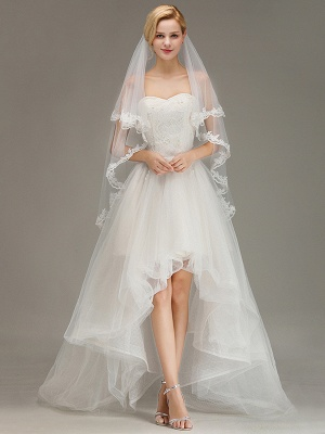 Two Layers Lace Edge Wedding Veil with Comb Soft Tulle Bridal Veil_4