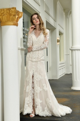 Delicate V-Neck High Split Long Sleeves Lace Wedding Dress With Court Train_10