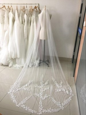 Long Lace Veil Available in White, Ivory