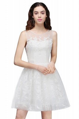 ALEXANDRIA | A Line Sheer Whit Short Tulle Cocktail Dresses With Lace_4