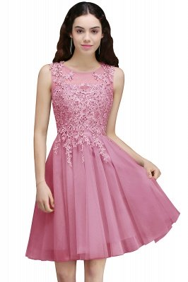 ANNA | A-line Short Modern Homecoming Dress With Lace Appliques_1