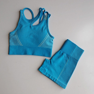 2 Pieces Ribbed Seamless Yoga Outfits Sports Bra and Leggings Set Tracksuits 2 Piece_31