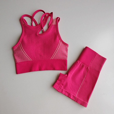2 Pieces Ribbed Seamless Yoga Outfits Sports Bra and Leggings Set Tracksuits 2 Piece_30
