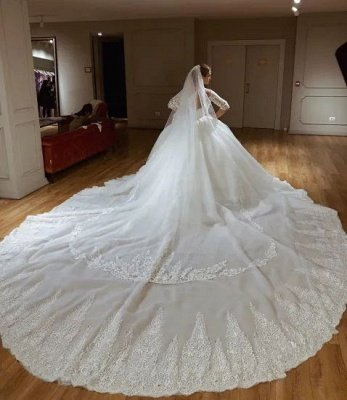 V-neck Lace Short Sleeve Ball Gown Wedding Dresses | Appliques Bridal Gowns With Court Train_3