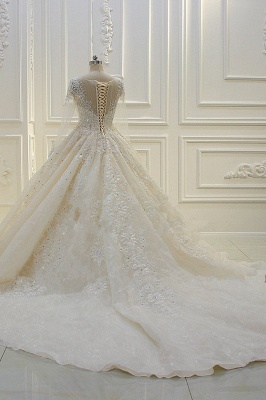 Luxury Ball Gown Long Sleeves Lace Applqiues Beadings Wedding Dress_4