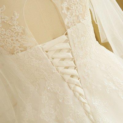 Elegant Plus Size Lace Wedding Dress A-line Floor Length V-neck Tulle Appliques Lace-up Poet Sleeves_6