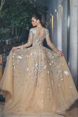 Stunning Illusion Long Sleeve Sexy Evening Gowns | A-line Lace Appliques Tulle Prom Dress_3