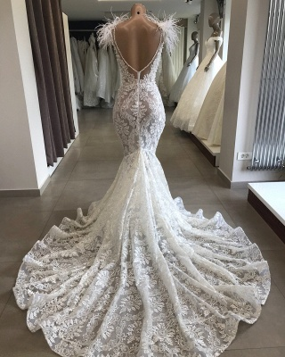 Fit and Flare Lace Crystals Necklace Wedding Dresses | Open Back Bridal Gowns with Feather_1