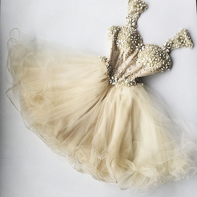 Beaded Flowers Champagne Homecoming Dresses cheap Organza Short Appliques Hoco Dress_3
