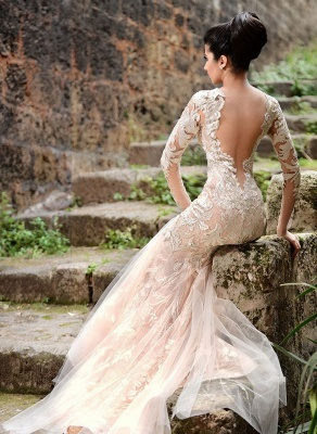 Mermaid Long Sleeve Ivory Lace Wedding Dresses | Sexy Sheer Tulle See Through Back Evening Dresses_4