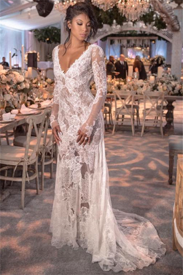 Long Sleeve Lace Wedding Dresses Cheap | Open Back See Through Wedding Gowns Online BC0249