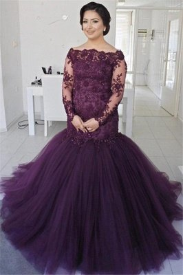 See Through Lace Fluffy Tulle Sexy Evening Gown | Long Sleeve Formal Evening Dresses_1