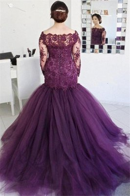 See Through Lace Fluffy Tulle Sexy Evening Gown | Long Sleeve Formal Evening Dresses_3