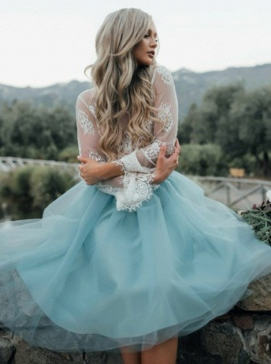 Chic Lace Long Seeves Tutu Tulle  Homecoming Dresses_3